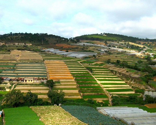 Dalat - Welcome Vietnam Tours
