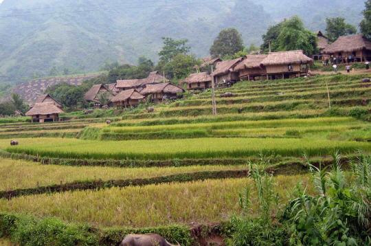 From Hmong villages to Taphin
